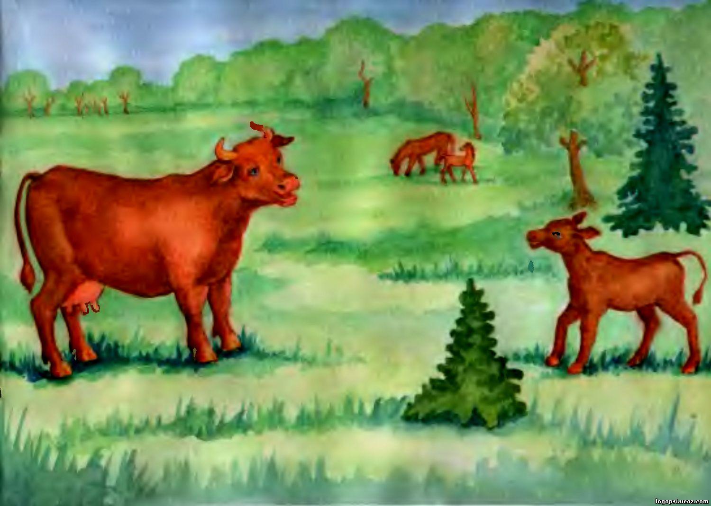Картинка для детей корова с теленком