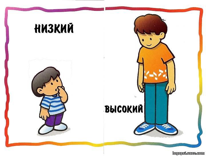 картинки для детей высокий низкий